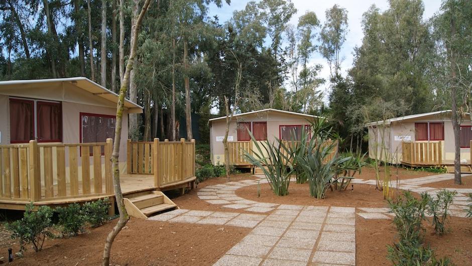 Lodge Tent - Lodge Tent
